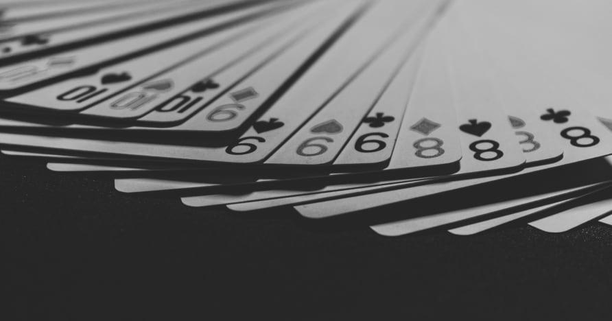 Kuidas elavad kasiinod töötavad